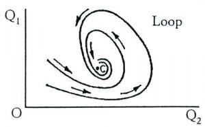 Il loop di L. Von Bertalanffy